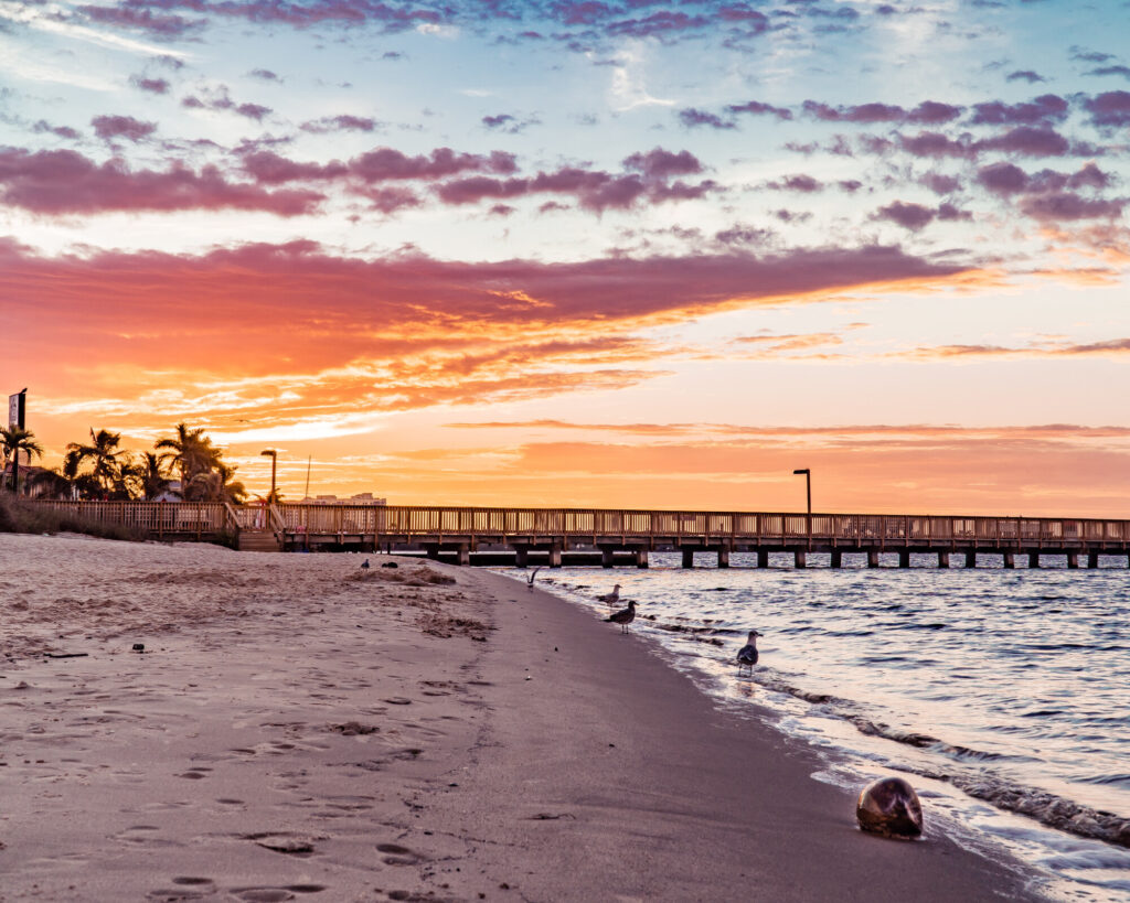 Florida Adventures: 10 Fun Things to Do in the Sunshine State